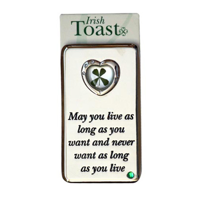Lucky Irish fridge magnet – May you live as long...