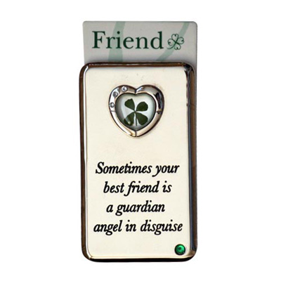 Lucky Irish fridge magnet – Sometimes your best friend...